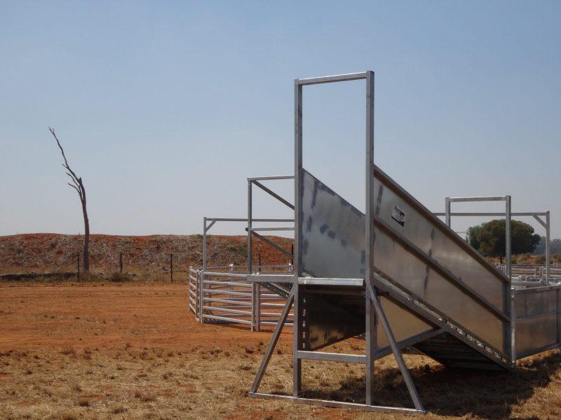 3.8 metre Standard Sheep Loading Ramp