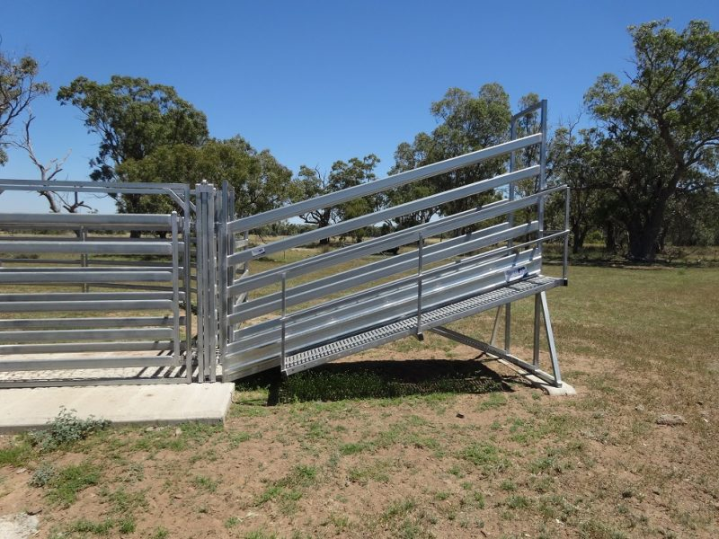 3.8m Standard Cattle Loading Ramp (2)