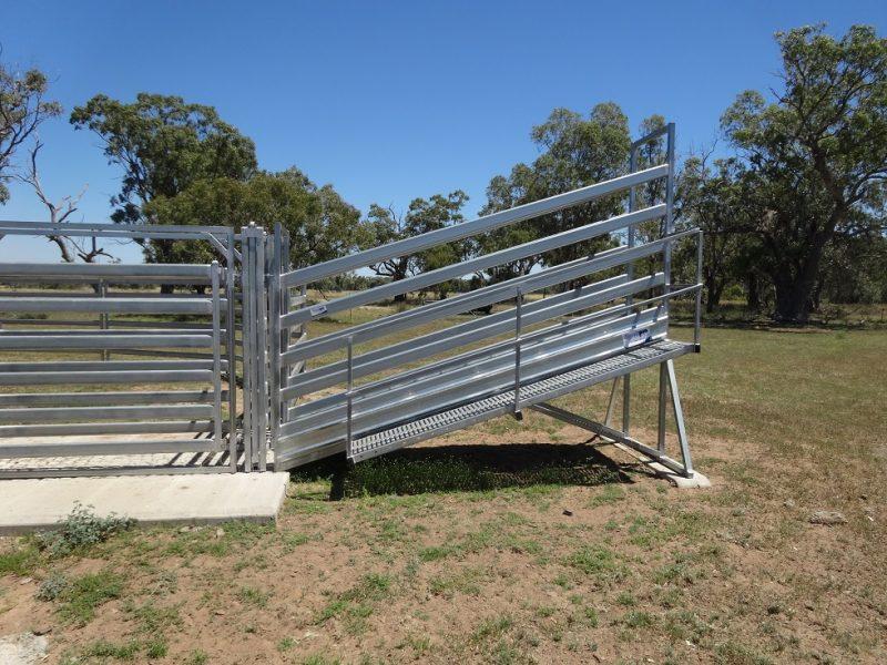 3.8m Standard Cattle Loading Ramp (2)