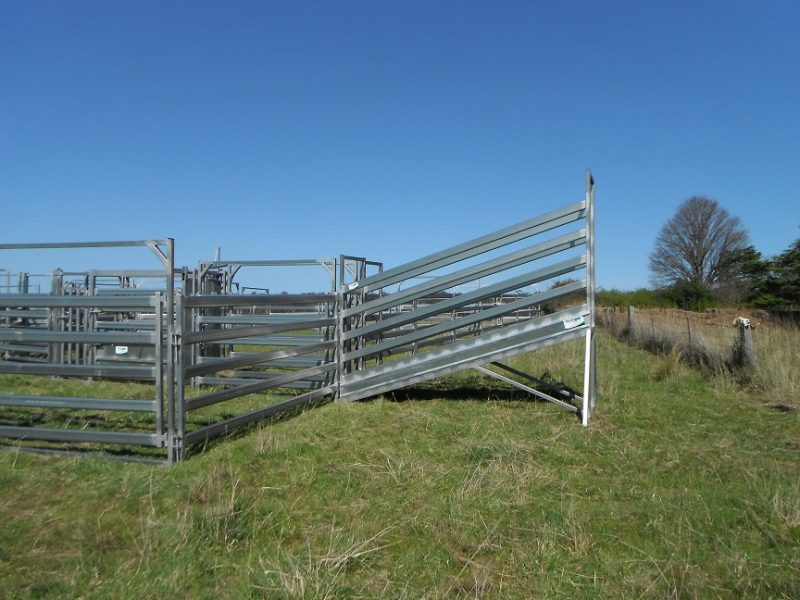 3.8m Standard Cattle Loading Ramp (5)