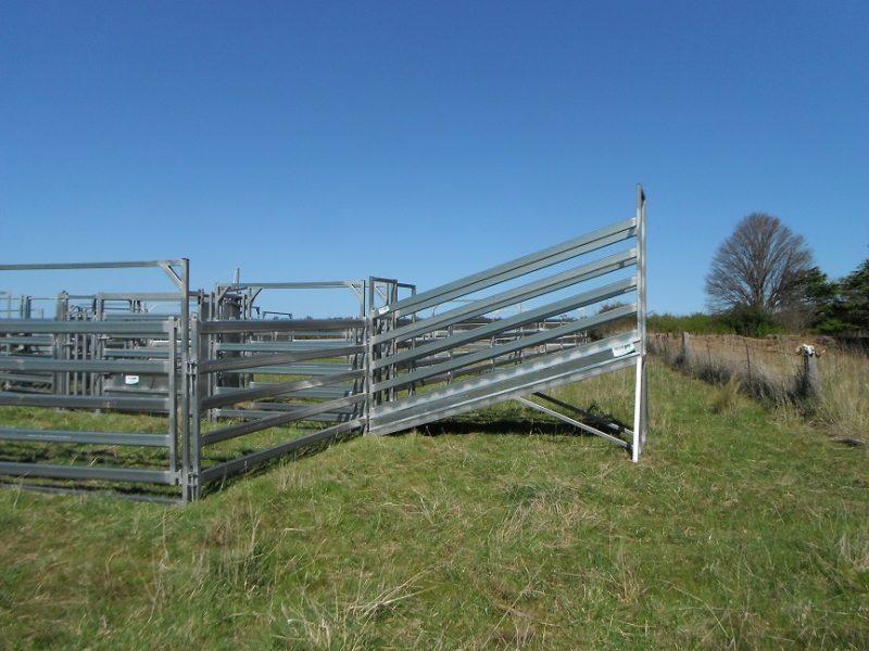 3.8m Standard Cattle Loading Ramp (5)