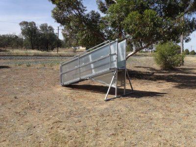 Budget Adjustable Sheep ramp (2)