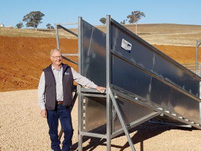 Budget Adjustable Sheep ramp (3)