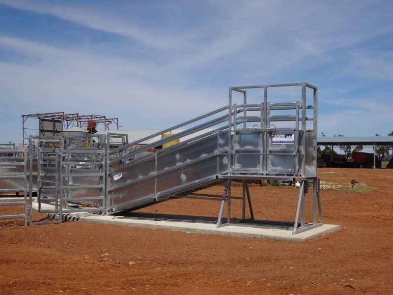 Cattle Loading Ramp with level extension (1)