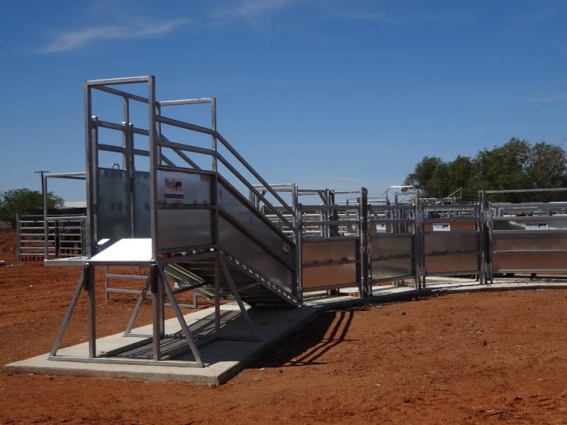 Cattle Loading Ramp with level extension (3)