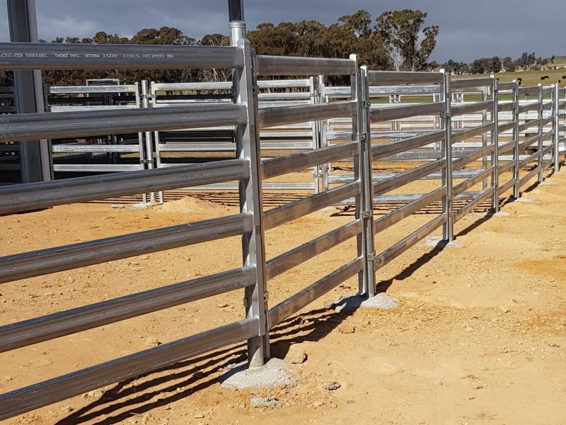 HD cattle panel