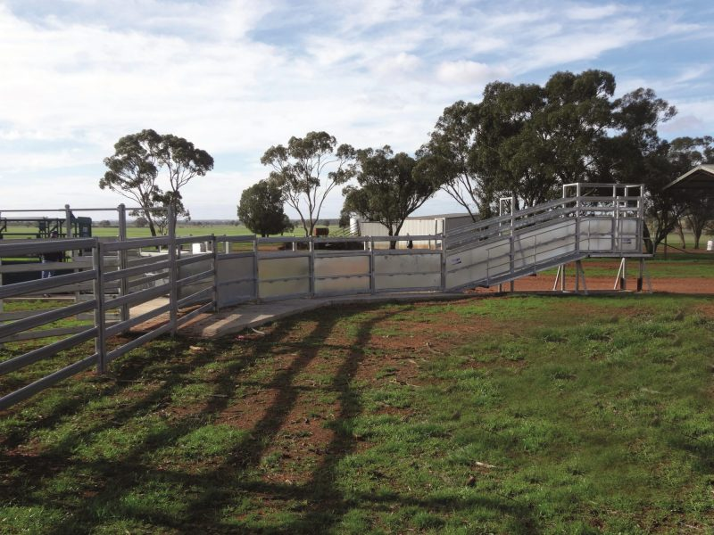 Heavy Duty Permanent cattle Loading Ramp (1)