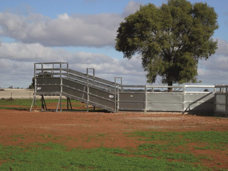 Heavy Duty Permanent cattle Loading Ramp (2)