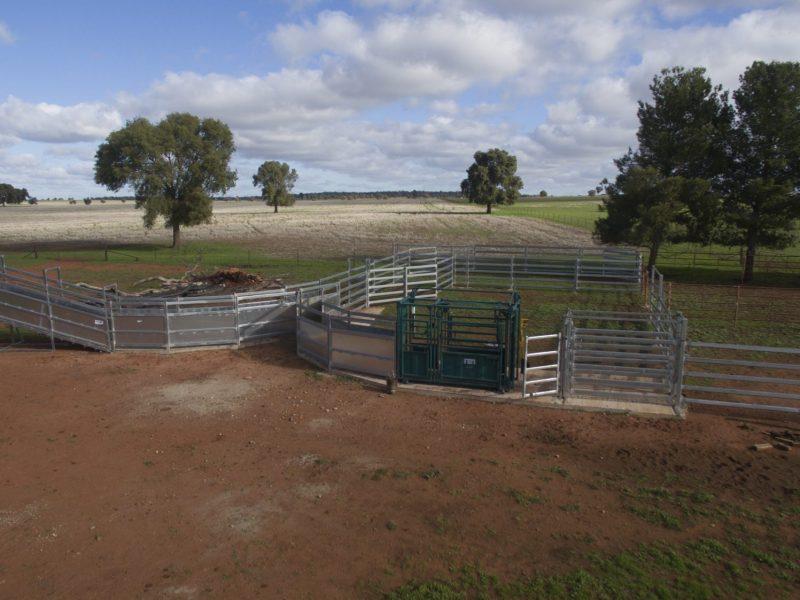 Heavy Duty Permanent cattle Loading Ramp (3)