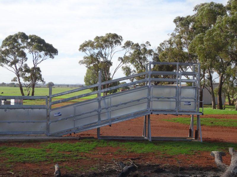 Heavy Duty Permanent cattle Loading Ramp (4)