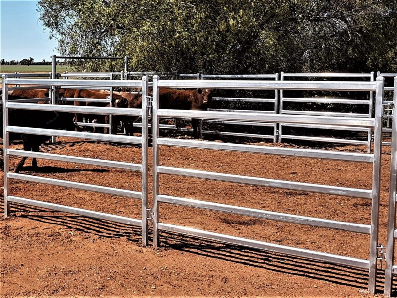 Mid R Cattle Panel