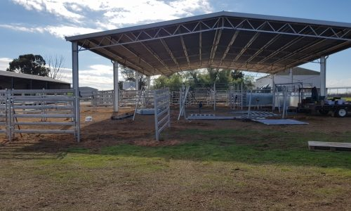 cattle install and delivery